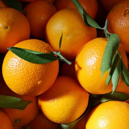 navel lane late naranjas